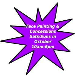 facepainting and concessions